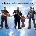 Electrik_Consort